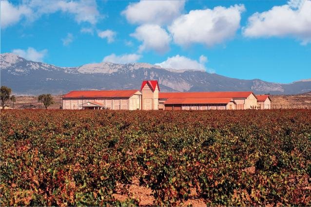 Finca Valpiedra Winery