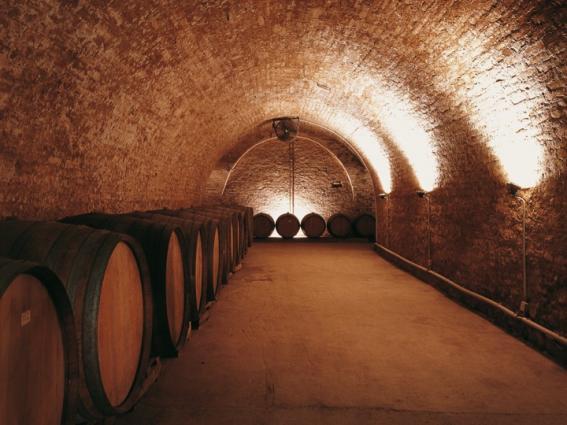 Loimer Wine Cellar