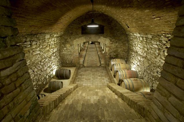 Wieninger Wine Cellar