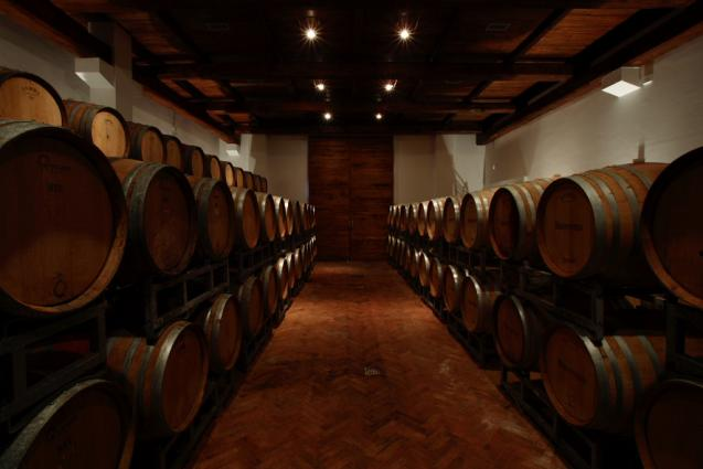 Montevetrano Cellar