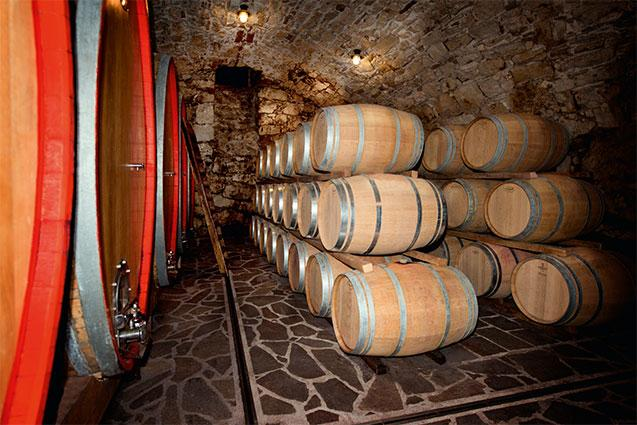 Tiefenbrunner Historic Cellar