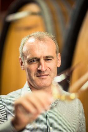 Willi Stürz, Tramin Winemaker