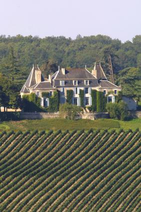 View of the Chateau from the Vineyard