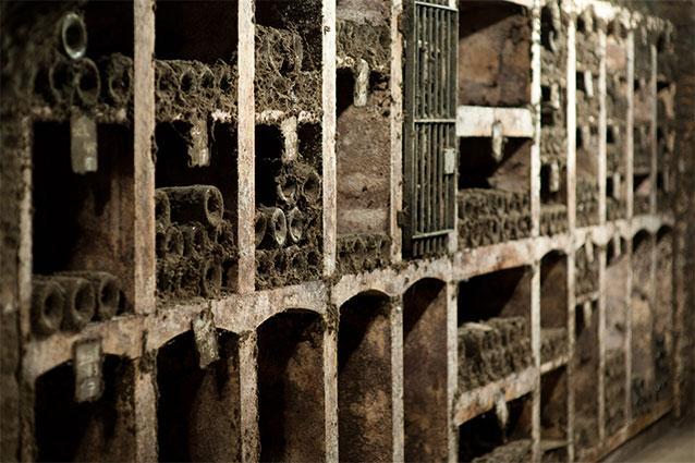 Domaine Tollot-Beaut Cellar