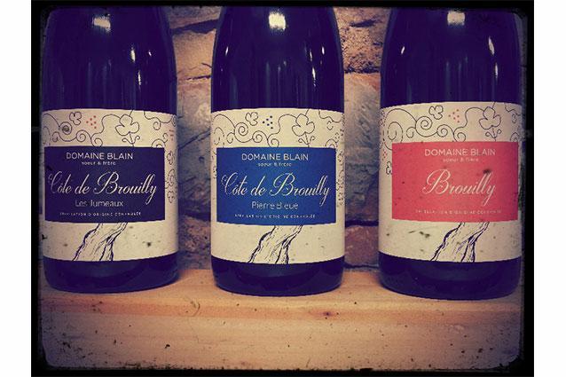 Domaine Blain Soeur et Frère Bottles
