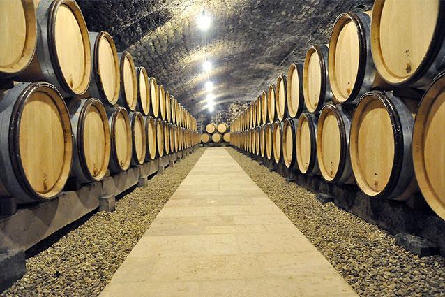 Domaine Xavier Monnot Barrels in Cave
