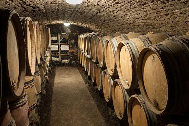 Domaine Gagnard-Delagrange Cellar