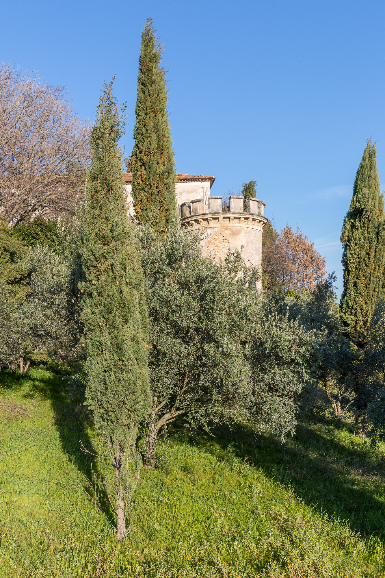 Rouanne Tower