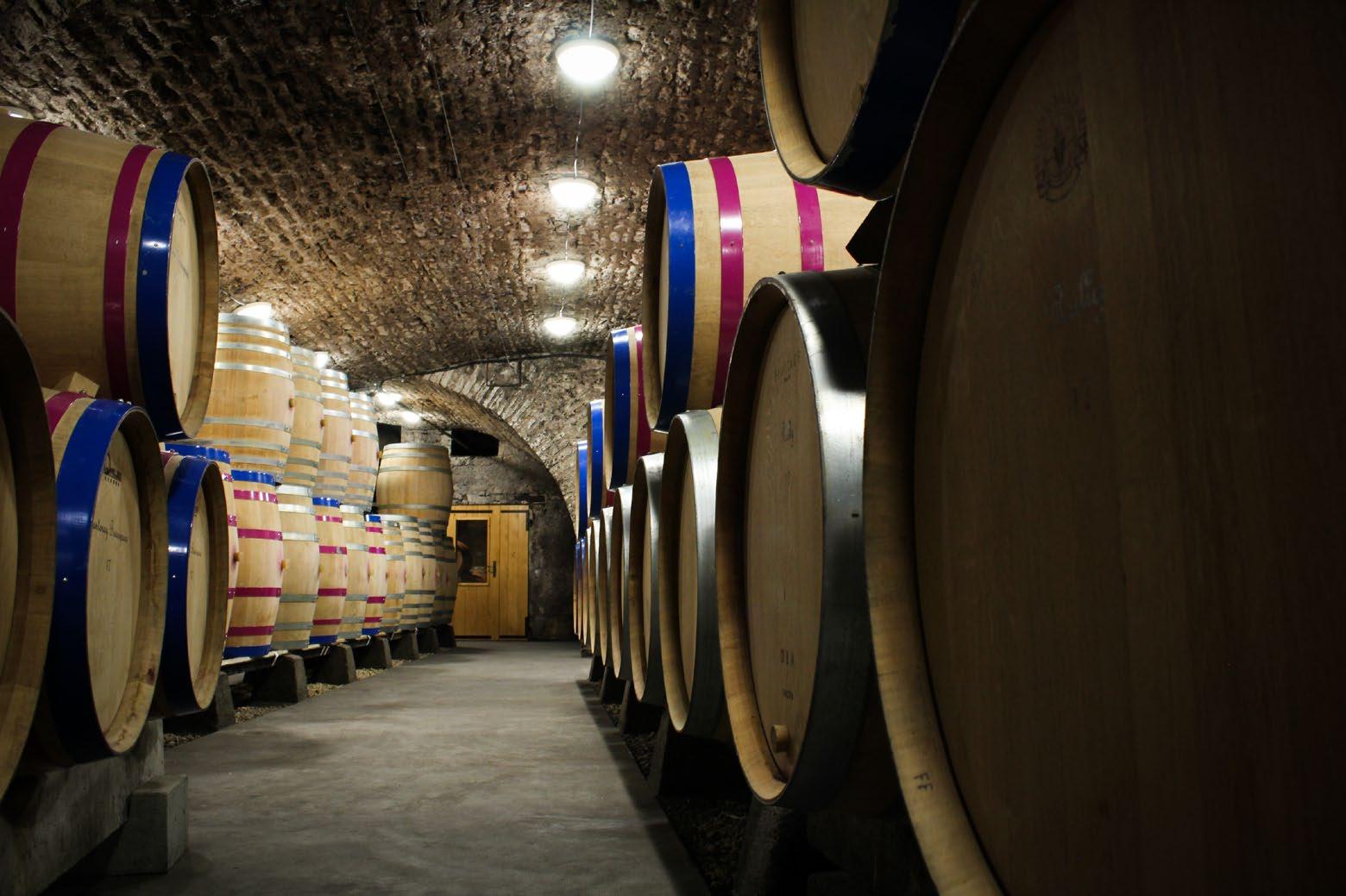 Chanzy Cellar