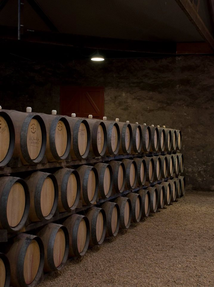 Yalumba Barrel Room
