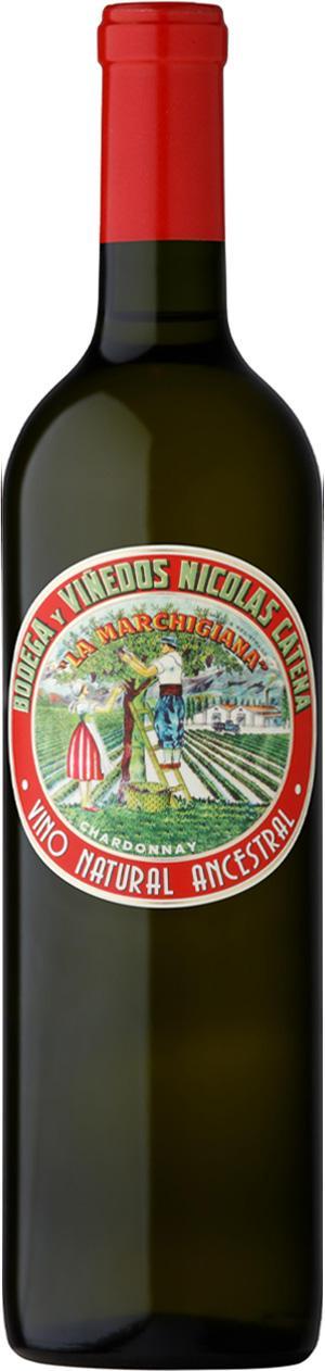 La Marchigiana Chardonnay